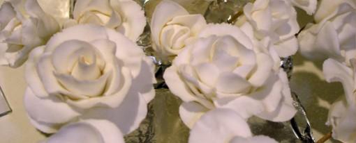 rosenrosenrosen-510x206