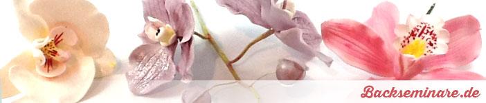 Kurs 3 – Orchideen mit Blütenpaste